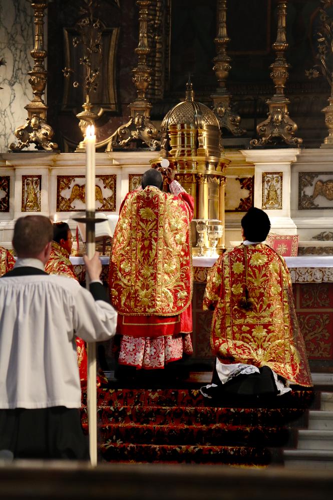 photograph � robert cardinal sarah �ad orientem�